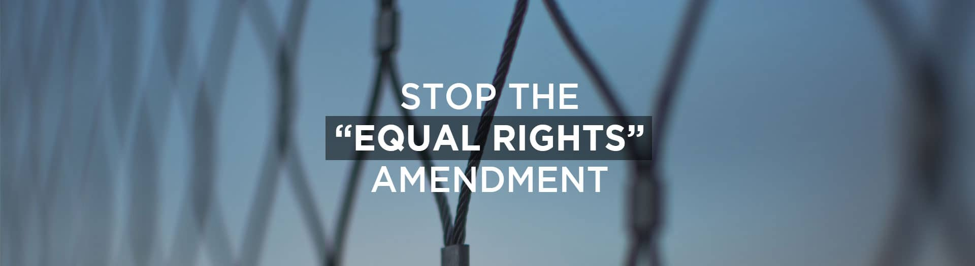 stop the so-called equal rights amendment